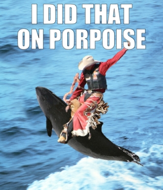 I did that on porpoise